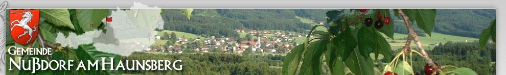 Sommerbild Gemeinde Nußdorf